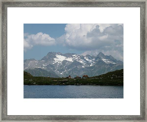 Alps Magenificence Framed Print