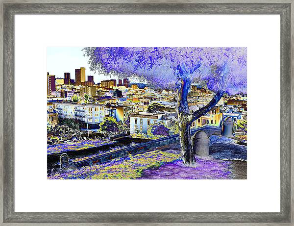 Alta Plaza Framed Print