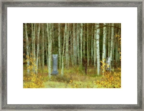 Alvarado Cemetery 41 Framed Print