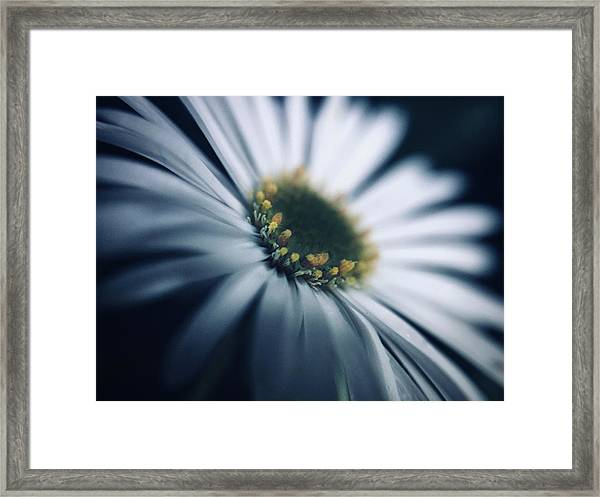 Always Searching For A Signal Framed Print