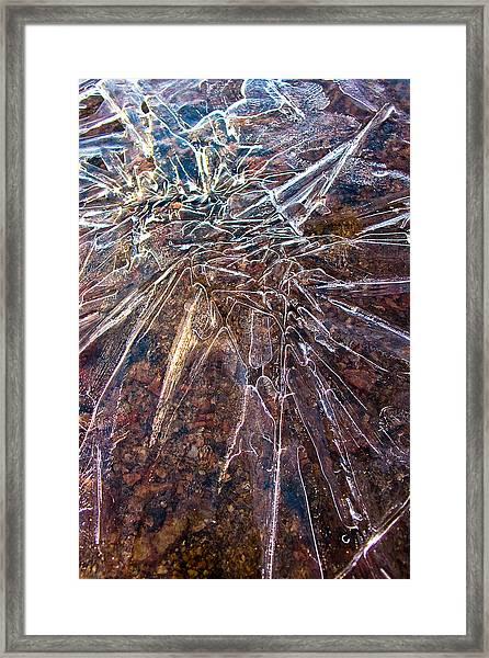 Amazement Framed Print by Marian Kraus