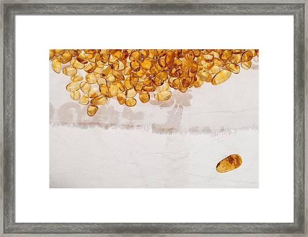 Amber #7863 Framed Print