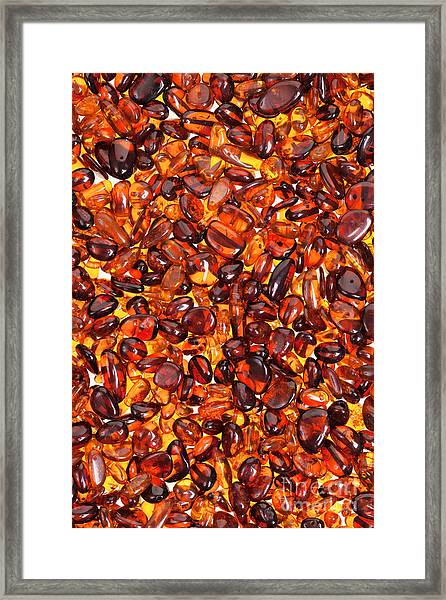 Amber #7960 Framed Print