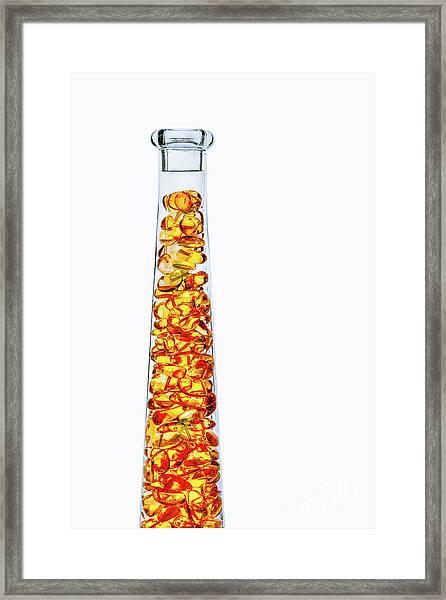 Amber #8429 Framed Print