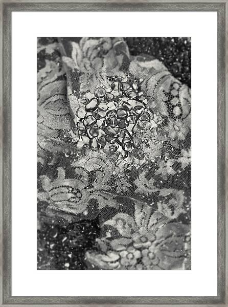 Amber #8647 Framed Print