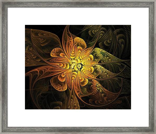 Amber Light Framed Print