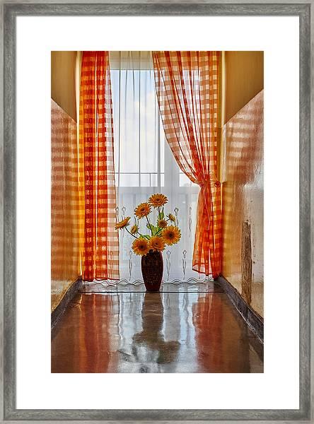 Amber View Framed Print