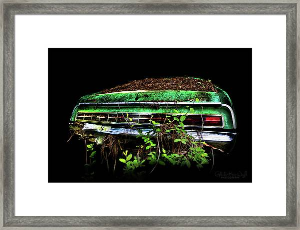 Framed Print featuring the photograph Amc Javelin  by Glenda Wright