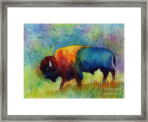 American Buffalo IIi Framed Print