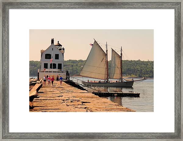 American Eagle At The Lighthouse Framed Print