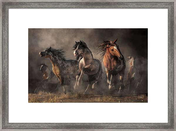 American Paint Horses Framed Print