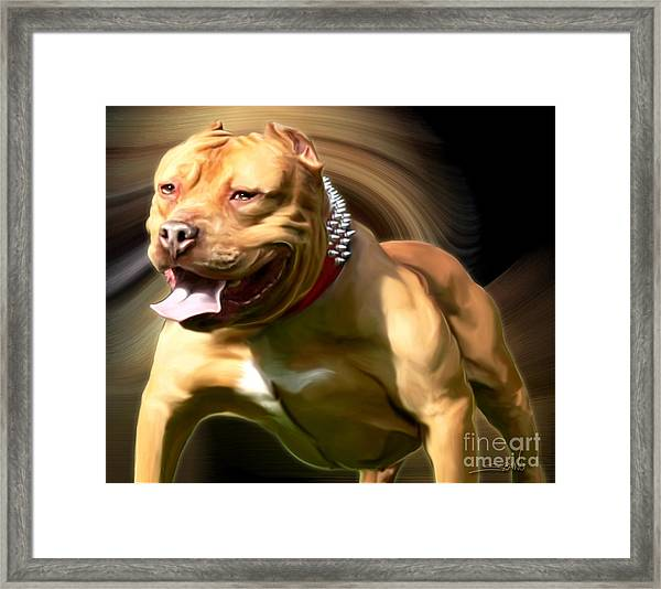 American Red Bully Pitbull By Spano Framed Print