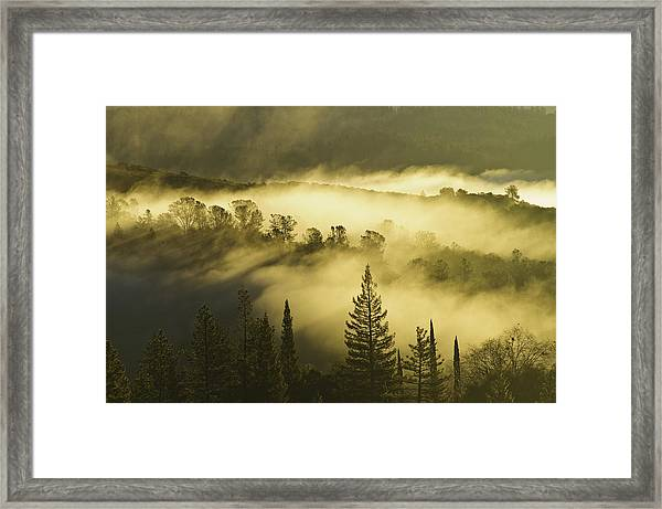 American River Canyon In The Fog Framed Print