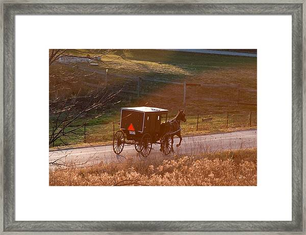 Amish Buggy Afternoon Sun Framed Print