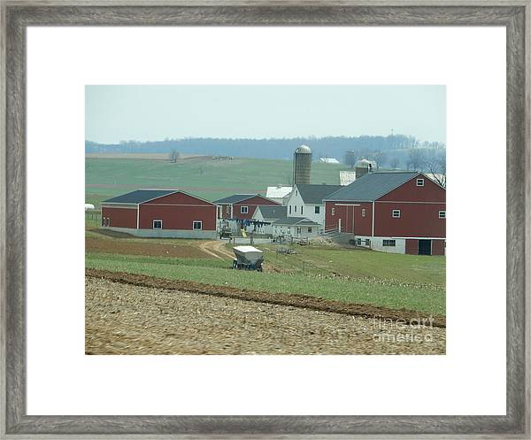 Amish Homestead 6 Framed Print