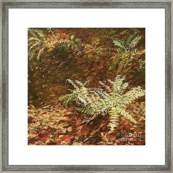Among The Leaves Framed Print by Carla Dabney