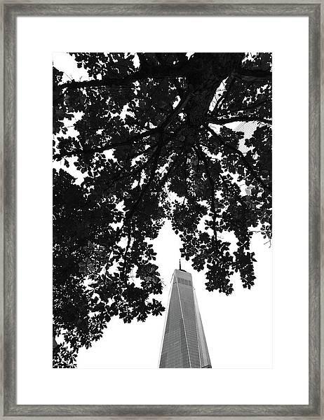 An Architect's Poem Framed Print