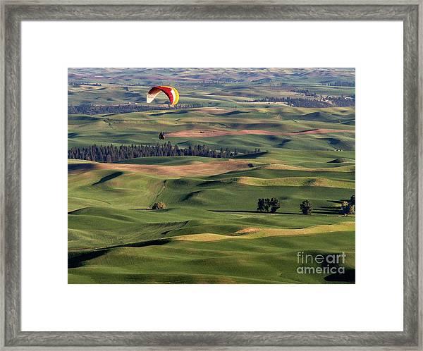 An Evening Flight Agriculture Art By Kaylyn Franks Framed Print