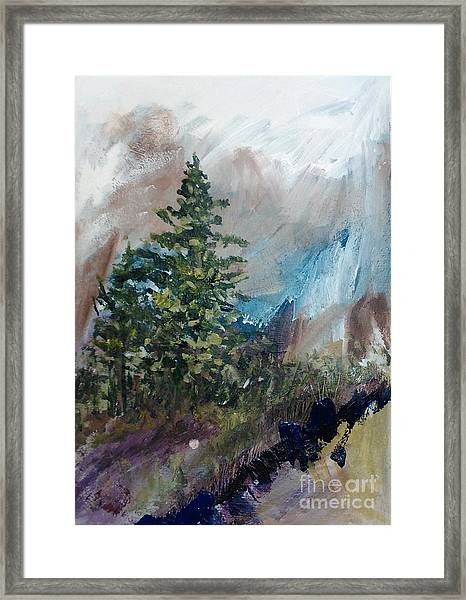An Yosemite Afternoon Framed Print