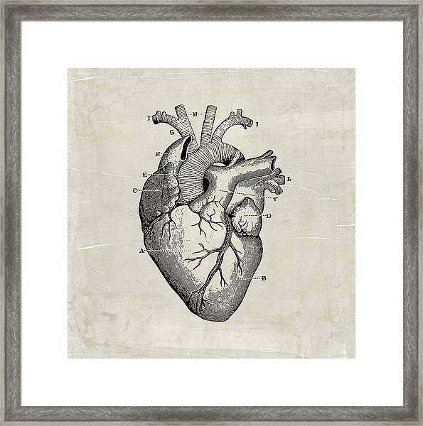 Anatomical Heart Medical Art Framed Print