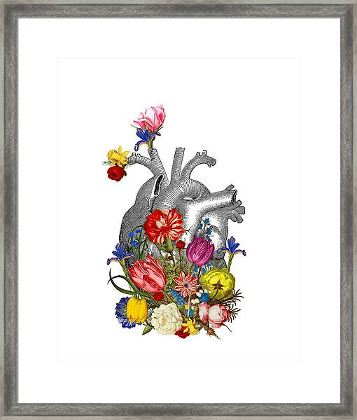 Anatomical Heart With Colorful Flowers Framed Print