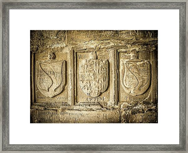 Framed Print featuring the photograph Ancient Carvings by Nick Bywater