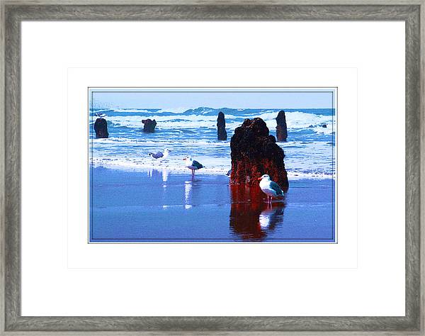 Ancient Trees And Seagulls At Neskowin Beach Framed Print by Margaret Hood