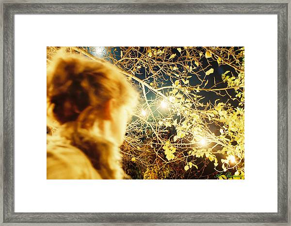 And Then There Was Sight Framed Print