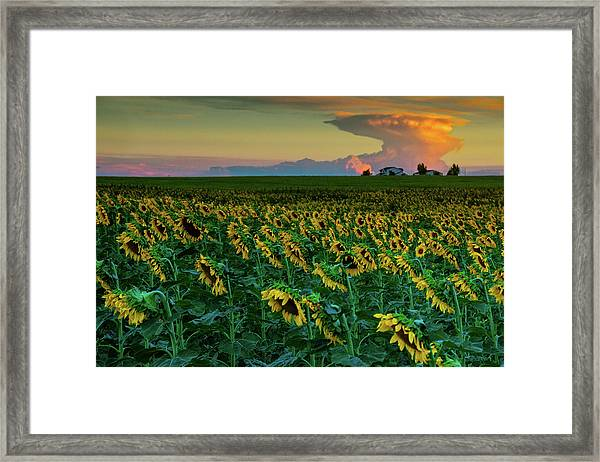 And Then Things Went Nuclear Framed Print