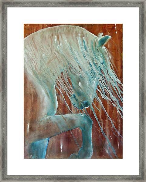 Andalusian Stallion Framed Print