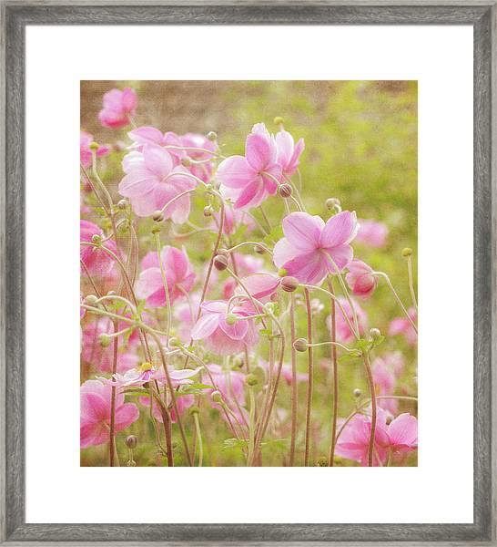 Anemone Dance Framed Print