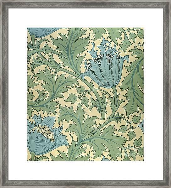 Anemone Design Framed Print