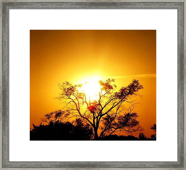 Angel Light Framed Print