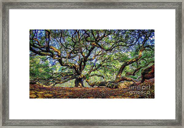 Angel Oak In Digital Oils Framed Print