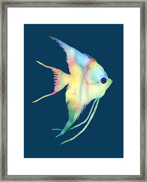 Angelfish I - Solid Background Framed Print