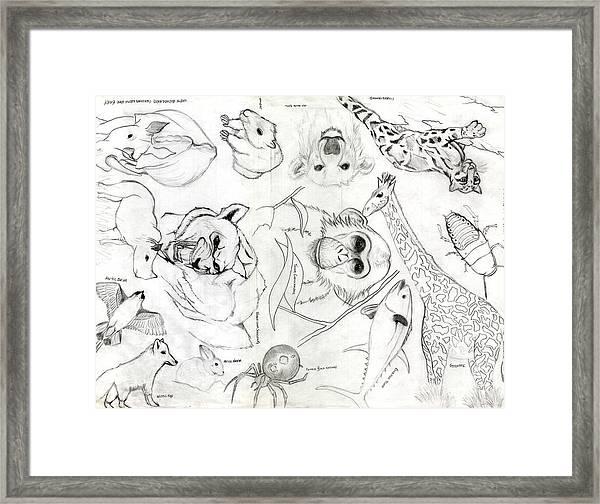 Animal Collage Framed Print