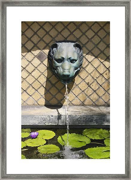 Animal Fountain Head Framed Print