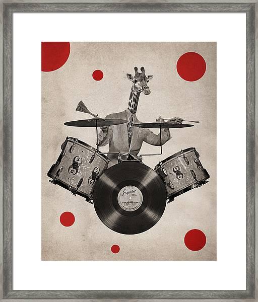 Animal19 Framed Print