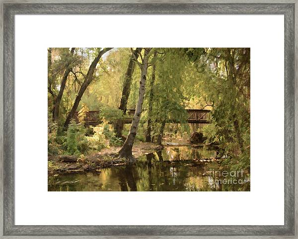 Annie's Glen Bridge Framed Print