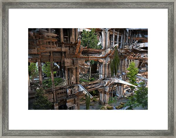 Another Win For Nature Framed Print