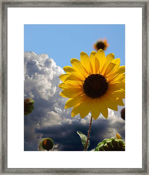Answer Coming Framed Print