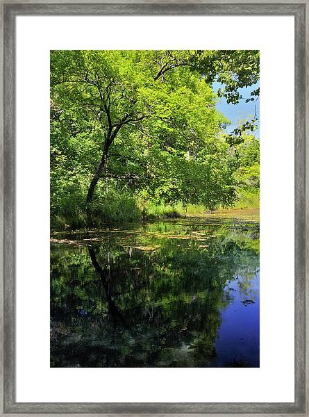 Antelope Springs Iv Framed Print