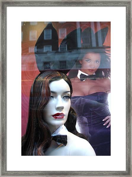 Aping Framed Print by Jez C Self