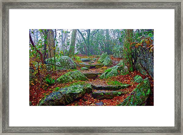 Appalachain Trail In The Clouds Framed Print