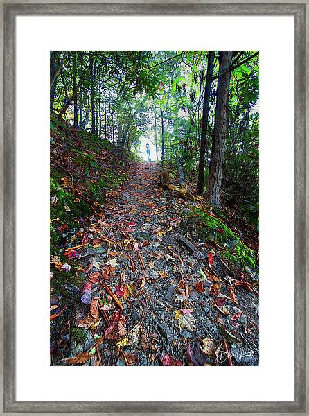 Framed Print featuring the photograph Appalachian Trail Hike by David A Lane
