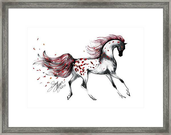 Appaloosa Rose Petals Horse Framed Print
