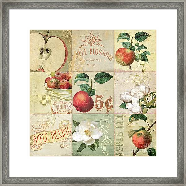 Apple Blossoms Patchwork II Framed Print
