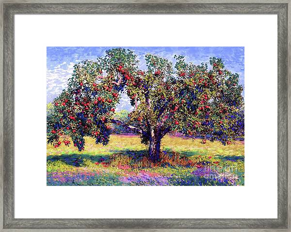 Apple Tree Orchard Framed Print