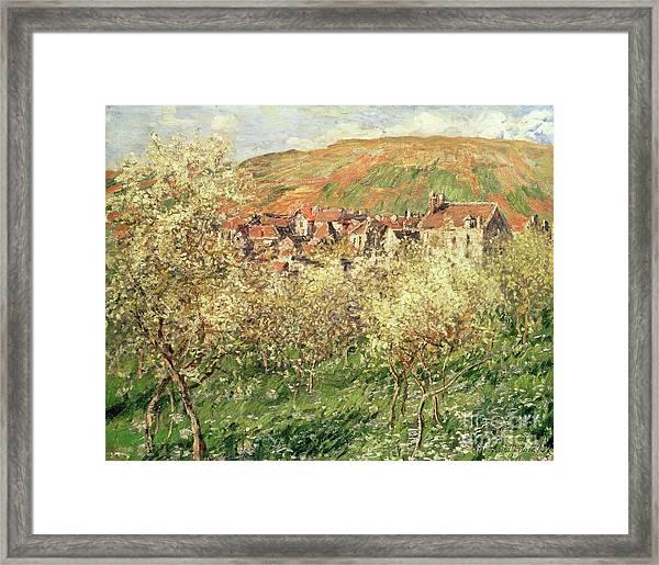 Apple Trees In Blossom Framed Print