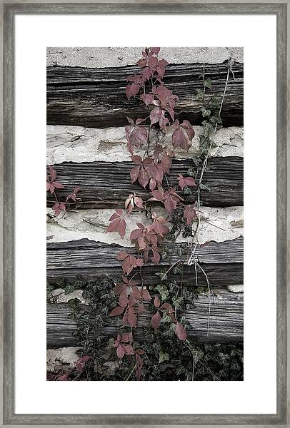 Appleberry Mountain 2 Framed Print